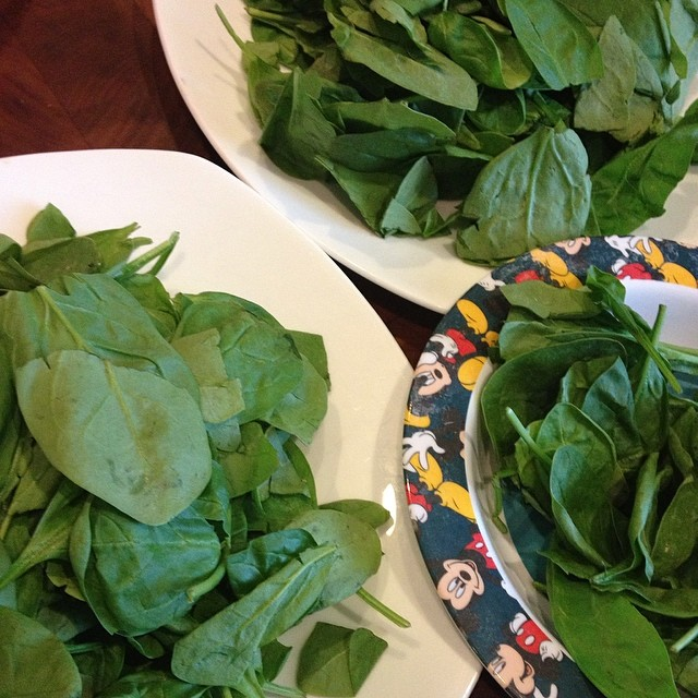 We're obsessed with spinach in my house! Can you guess where I'm going with this dinner?  #guess #dinner #spinach #veggielove